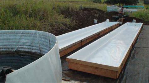 backyard aquaponics system design aquaponics systems designs
