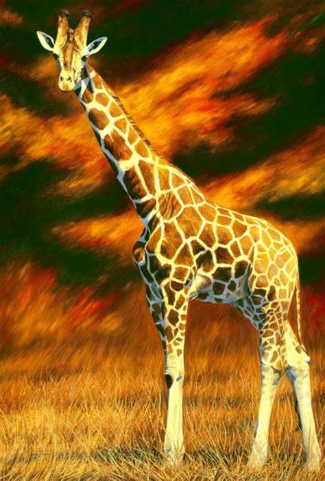 imagenes de jirafas al oleo pintura moderna y fotograf 237 a art 237 stica cuadros de