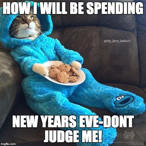 New Years Eve Meme - cat in pjs imgflip
