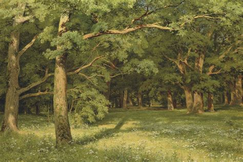 The Clearing file shiskin the forest clearing jpg wikimedia commons
