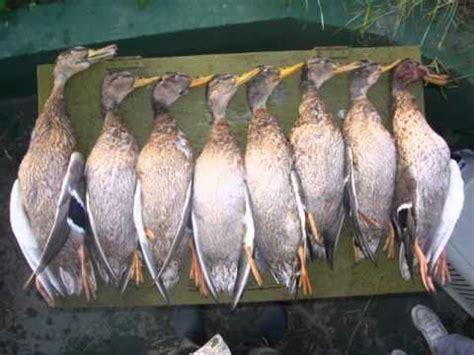 tableau de hutte tableau de chasse