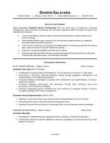 resume sles summary professional summary template template design