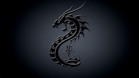 black and white dragon wallpaper dark dragon wallpapers wallpaper cave