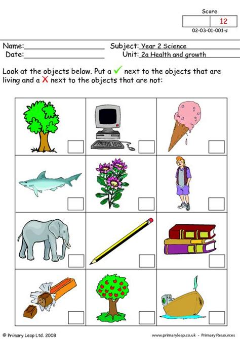 Living And Nonliving Things Worksheets Pdf by Objects That Are Living Primaryleap Co Uk