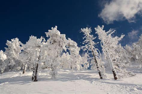 cadenas nieve baqueira d 237 as de powder y descontrol lugares de nieve