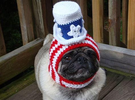 pug hat sweethoots pug hats 50 pics