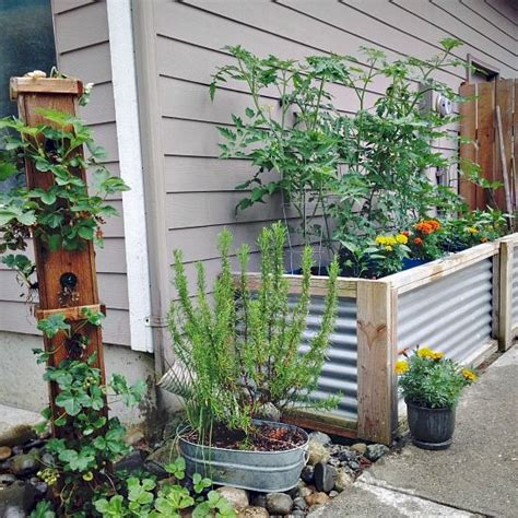 Self Watering Strawberry Planter by Gardens Self Watering And Strawberries On