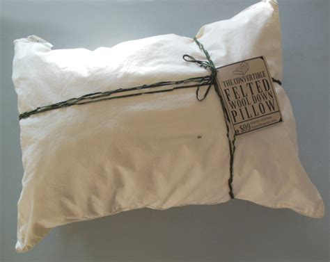 search   dr mercola approved pillow