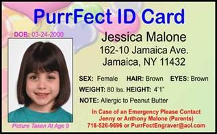my id card project אתר אנגלית מעיין תשע quot ח