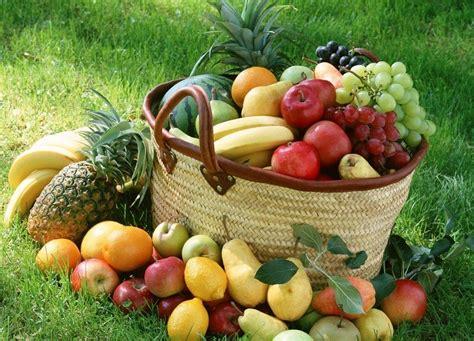 l alimentazione sana l importanza di una sana alimentazione associazione per