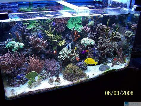 120 liter meerwasseraquarium aquarium glasbecken 120x40x50 cm rechteck 240 liter