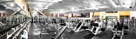 crossing steve nash langley steve nash fitness world and sports club