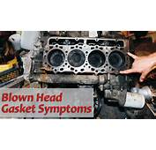 Topic Blown Head Gasket  CAR FROM JAPAN