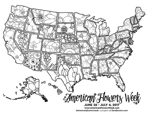 usa map coloring page usa map of state flowers free promotional material for
