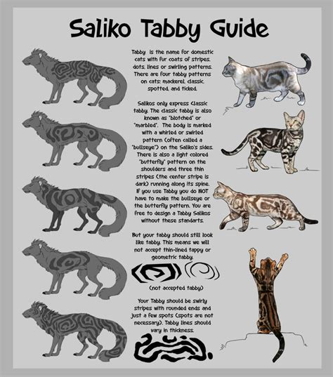 Types Of Tabby Patterns Pictures to Pin on Pinterest