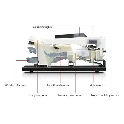 Digital Piano Kawai Cn25 Rosewood kawai cn25 digital piano premium rosewood package at