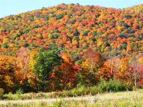 new affordable fall foliage hiking and kayaking vacations