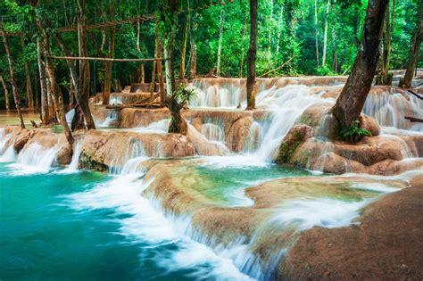 cascadas con 225 rboles imagui selva tropical tropical con la cascada de la cascada de