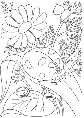 spring coloring pages hard coloring pages for kids printable flowers home