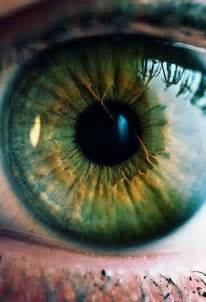 iris eye color wow similar to my green with gold and yellow