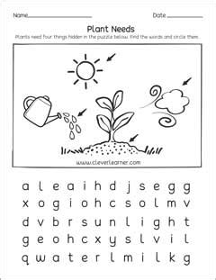 what do plants need to grow worksheet what plants need to grow worksheets for preschools
