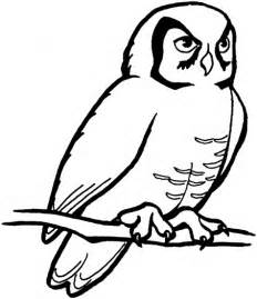 Owl Image Outline by Owl Outline Clipart Best