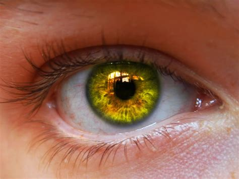occhio lade augen die tore zu deiner seele das erwachen der valkyrjar