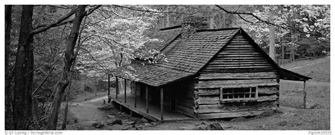Cabins In Black by Panoramic Black And White Picture Photo Pioneer Cabin In