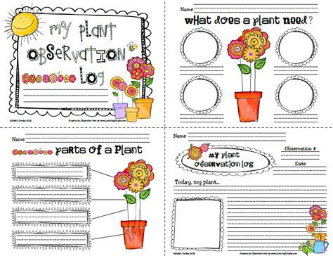 printable plant observation journal sailing through 1st grade plant observation log for the