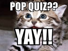 Yay Meme Face - pop quiz yay happy kitten meme generator