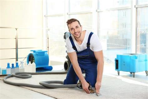 what to expect from a house cleaner what to expect during the carpet steam cleaning process