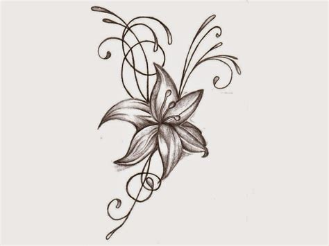 Drawing Flowers by Flower Drawing Structure Flower