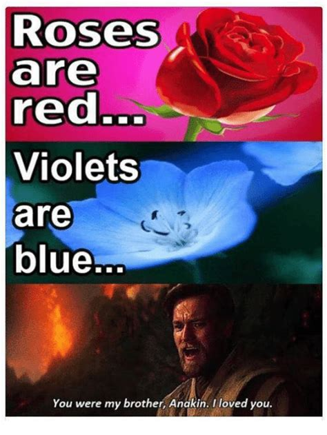 Roses Are Red Violets Are Blue Meme - 25 best memes about you were my brother anakin you were