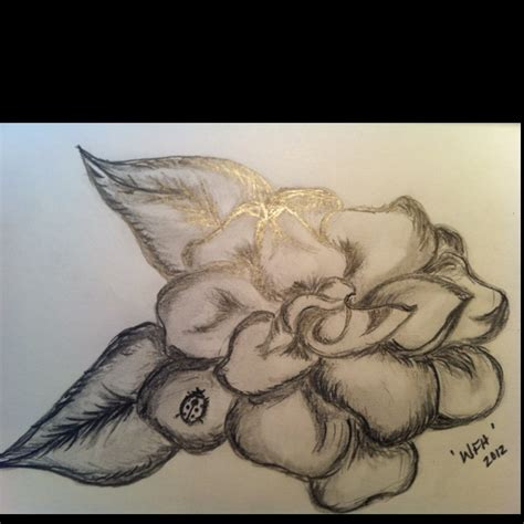 gardenia design for my friend pencil drawing 1 6