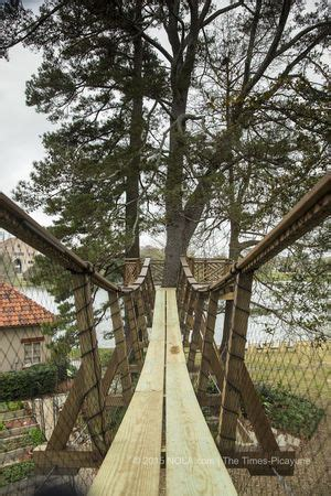 todd graves house 1000 images about pete nelson treehouse master on pinterest seasons trees and a tree