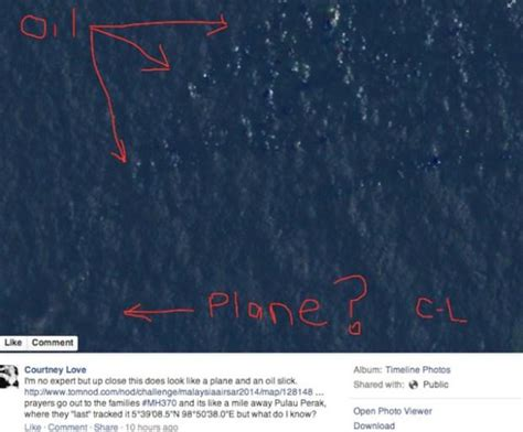 Malaysia Airlines Meme - did courtney love find the missing malaysian airlines