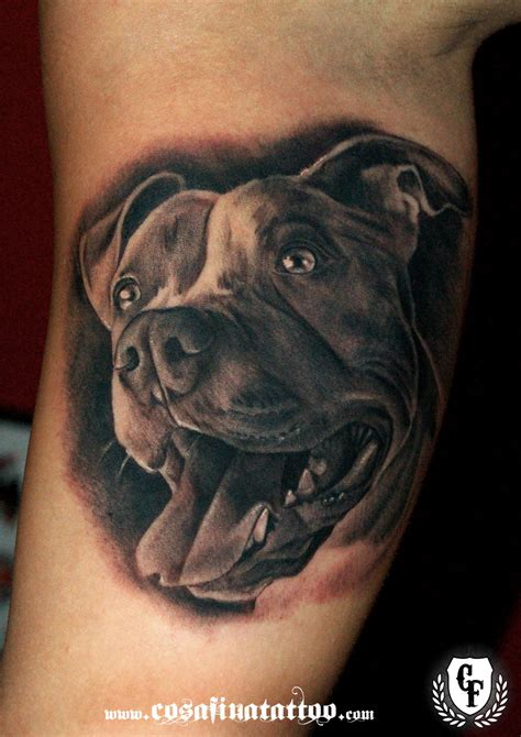 dog head tattoo designs pit bull sugar skull yahoo image search results