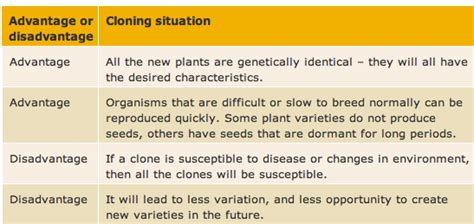 Advantages And Disadvantages Of Cloning by Advantage Disadvantages Cloning