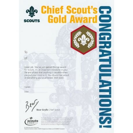 scout s honor books chief scout s gold award certificates the scout and