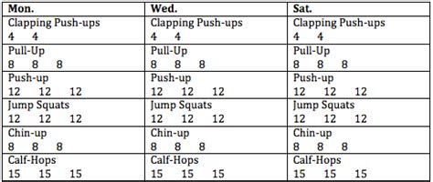 beginner s pull up workout pdf