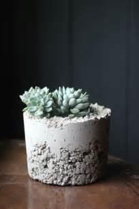 diy concrete planters decorator s notebook
