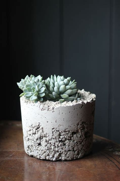 Concrete Planters Diy diy concrete planters decorator s notebook