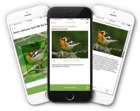 merlin bird id free instant bird id help for 2 000