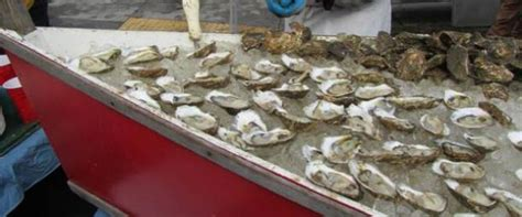 best oysters in cape cod cape cod top attractions things to do more flipkey