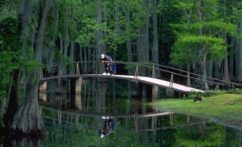Sam Houston State Park Cabins by Sam Houston Jones State Park Louisiana Travel