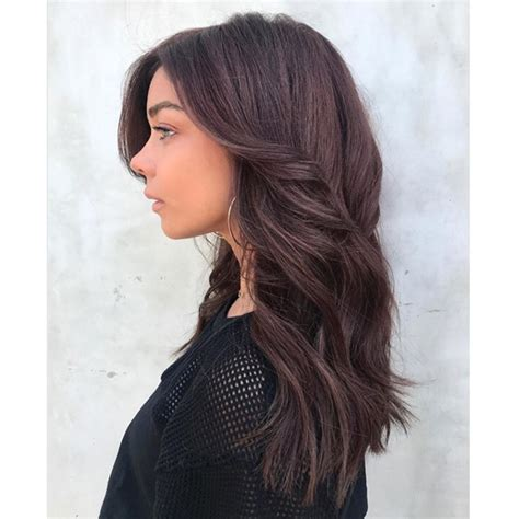 inoa hair color 5n search coiffure hair coloring search and hyland s cinnamon chocolate behindthechair