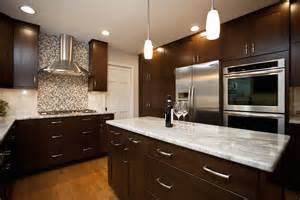 Beautiful Backsplashes Kitchens naperville contemporary river oak cabinetry amp design