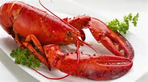 Lobster Hours Can You Freeze Cooked Lobster Reference