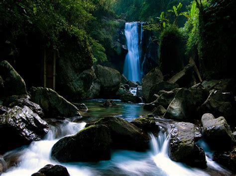 imagenes de paisajes y cascadas fonditos cascada en el bosque paisajes cascadas