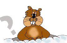 groundhog day st louis zoo groundhog impostors